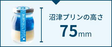 沼津プリンの高さ 75mm